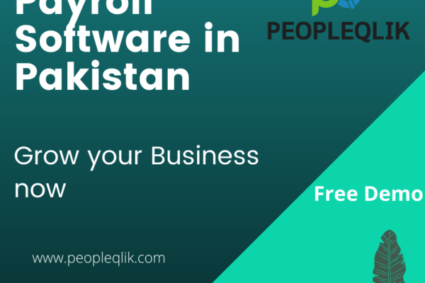 HRMS Payroll Software in Pakistan: A Complete Overview