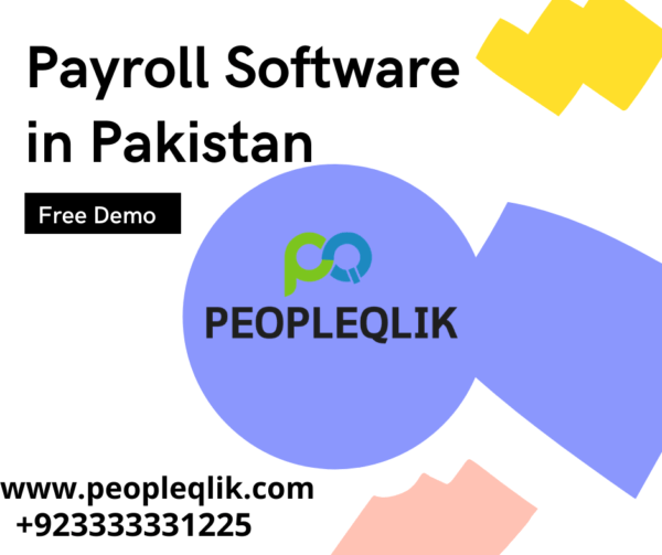 Avoid 7 payroll risks with Payroll Software in Pakistan