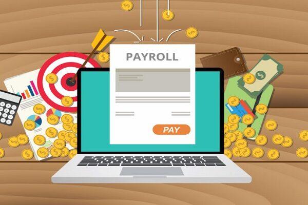Duties of Payroll Software Administrator in Pakistan