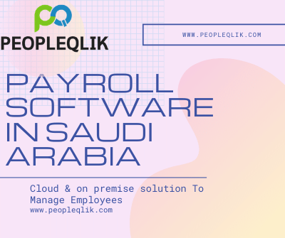 Issues of payroll can be avoided by using Payroll Software in Saudi Arabia
