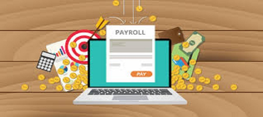 What are the usage of Payroll Software in Saudi Arabia?
