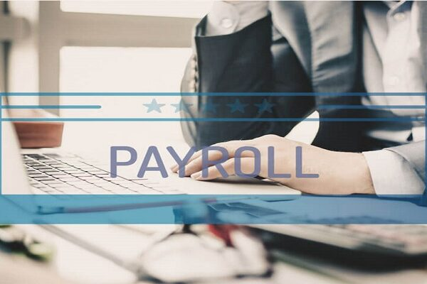 How Payroll Software in Saudi Arabia helps us in our basic needs?