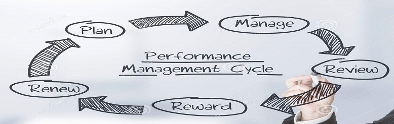How Performance Management Software in Qatar helps in reviewing the poor performance of employees at the time of assessment?