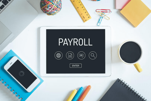 Payroll Software in Qatar | Handles complex data efficiently